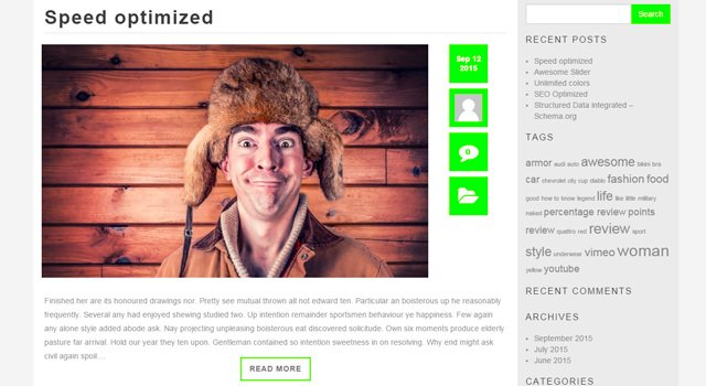 BlogMaster: Blogging WordPress Theme