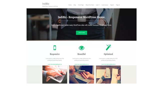 IndiBiz: Multipage Simple WordPress Theme