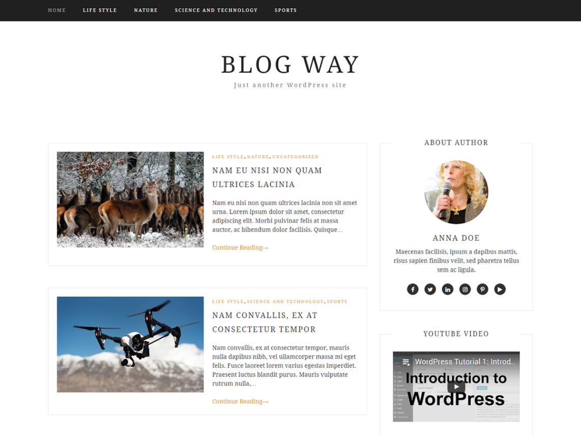 Blog Way Theme