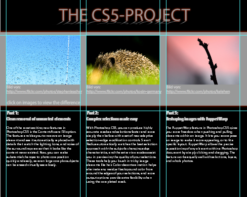 CS5-Workshop (2): Flash im Cross-Tools-Test