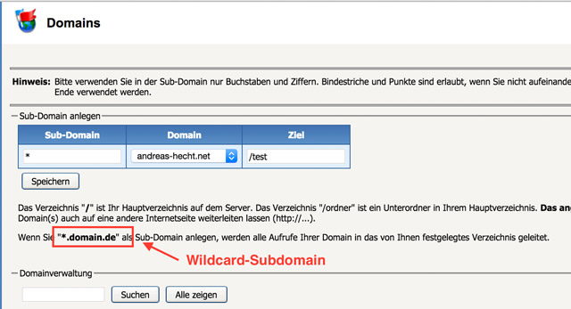 Die Konfiguration einer Wildcard-Subdomain in Confixx