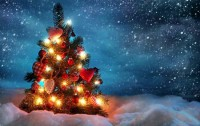 Beautiful Christmas Tree (Zur Quelle)