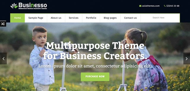 Businesso Theme