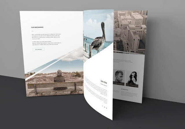 three page brochure