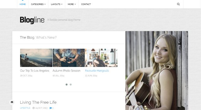 Blogline: Classic Blog Design WordPress Theme