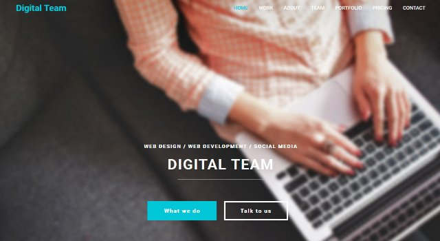 Digital Team: Modern Agency Web Template