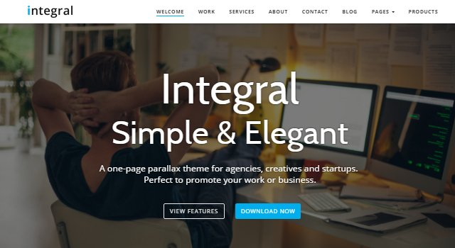 Integral: Elegant Agency WordPress Theme