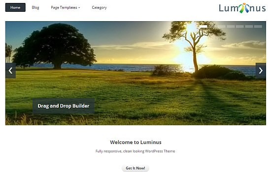 Luminus – Responsive WordPress
