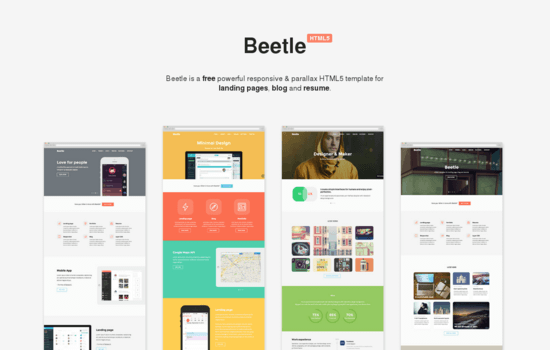 Beetle: Responsive HTML Template